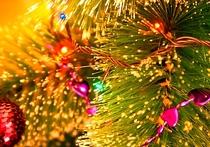 В школах Хабаровска брали плату за новогодние утренники