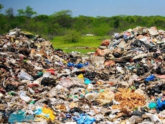 В крае появится оператор по утилизации коммунальных отходов