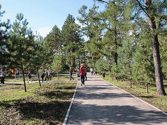 Парк Дома офицеров флота стал местом притяжения детей и взрослых