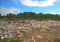 В Хабаровском крае на месте выданных гектаров обнаружили  горы мусора