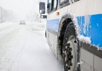 В Хабаровске сокращают время работы транспорта