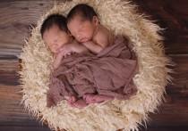 При рождении близнецов хабаровские родители могут рассчитывать на две выплаты